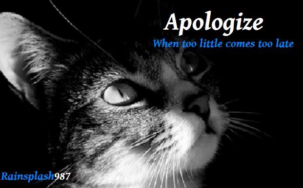 Apologize.jpg