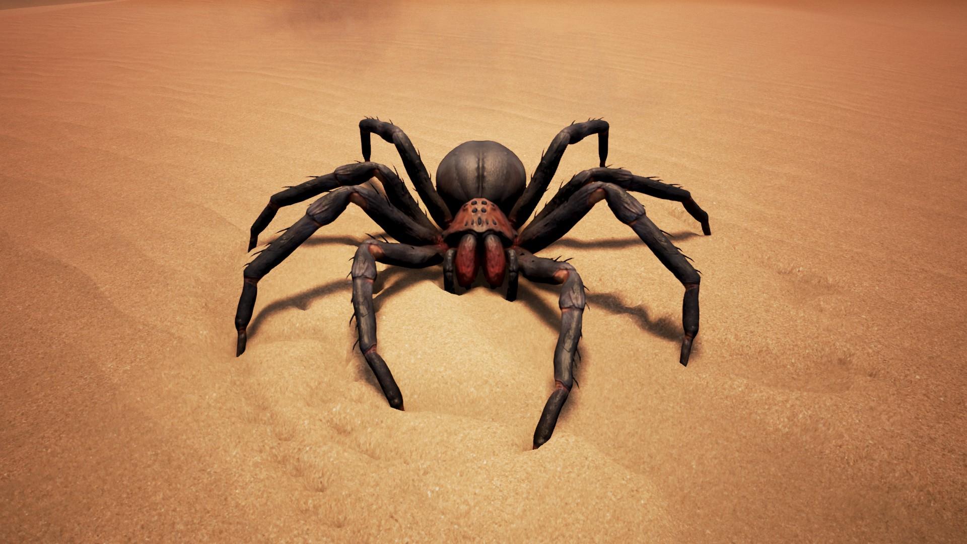 Redmouth Spider.jpg