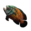 Icon rawFish.png