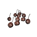Icon dried berries.png