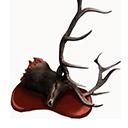 Icon head elk.png