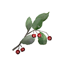 Icon berries highlands.png