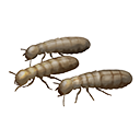 Icon handful of termites.png