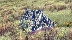 Tent deployed.jpg