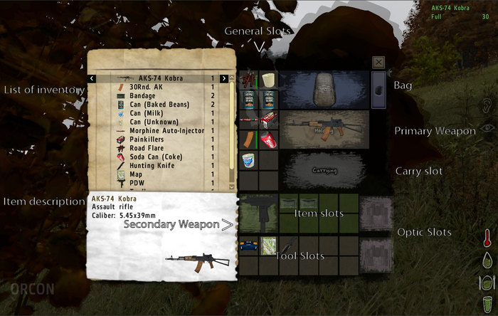 DayZ Inventory.PNG
