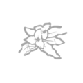 IconPerks botanyKnowledge.png