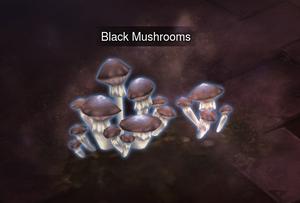 Black Mushrooms.png