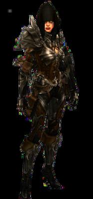 Demon Hunter - Diablo Wiki  Demon Hunter - ...