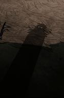 Shadow Watcher.png