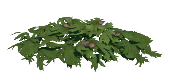 Immortal Garden Bush Preview.png