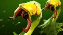 Venomancer Plague Ward icon.png