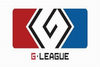 G-League 2013 (Ticket)