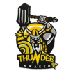 Team icon Thunder Awaken.png
