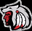 Team icon Comanche.png