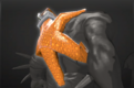 Cosmetic icon Deep Sea Starfish.png