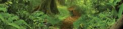 Emerald Vampire Wiki