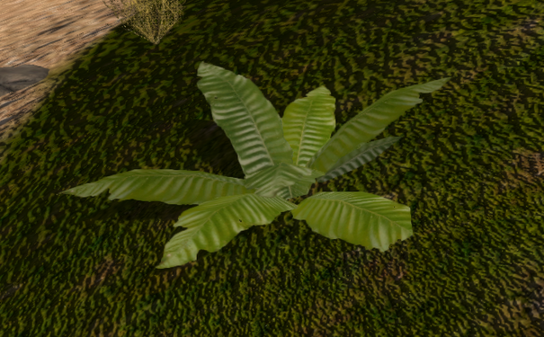 Bush 04 deco.png