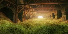 Seed Storage.png