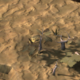 Dirt Field.png