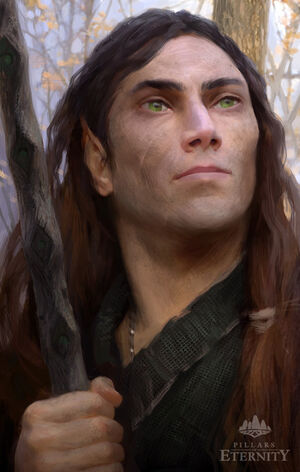 Elf-druid-portrait.jpg