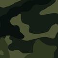 FNV Woodland pattern.png
