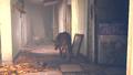 Fallout4TrailerAn014.png
