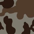 Fo4 USMC Desert.png