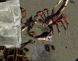 KillGiantRadscorpion.png