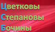 Семья Цветковых, Бочиных, Степановых вики