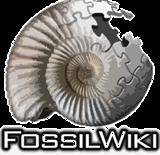 Fossil Wiki | FANDOM powered by Wikia