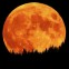 Full Moon Features Wiki