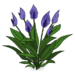 Peace Lily Flower Bed.png