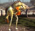 Mermaid Goat