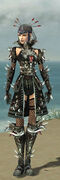 Necromancer Elite Canthan Armor F gray front.jpg
