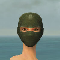 Mask of the Mo Zing F gray front.jpg