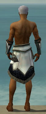 Paragon Obsidian Armor M gray arms legs back.jpg
