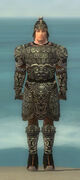 Warrior Canthan Armor M gray front.jpg