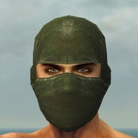 Mask of the Mo Zing M gray front.jpg