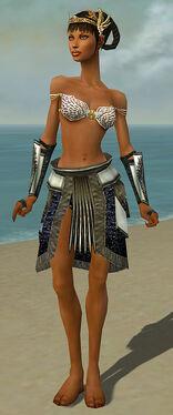 Paragon Obsidian Armor F gray arms legs front.jpg