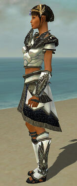 Paragon Obsidian Armor F gray side.jpg