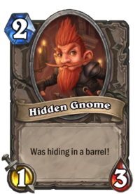 Hidden Gnome(387).png