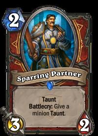 Sparring Partner(22354).png