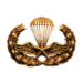 Para-Training (Gold)