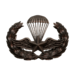 Para-Training (Bronze)