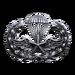 Para-Training (Silver)