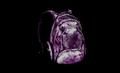 Medium Backpack (Skully Pink).png