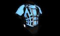 Heavy Armor (Hynx v2).png