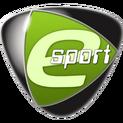 Team Acer logo.png