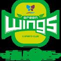 Jin Air Green Wings Falconslogo square.png