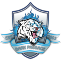 DP logo 150.png
